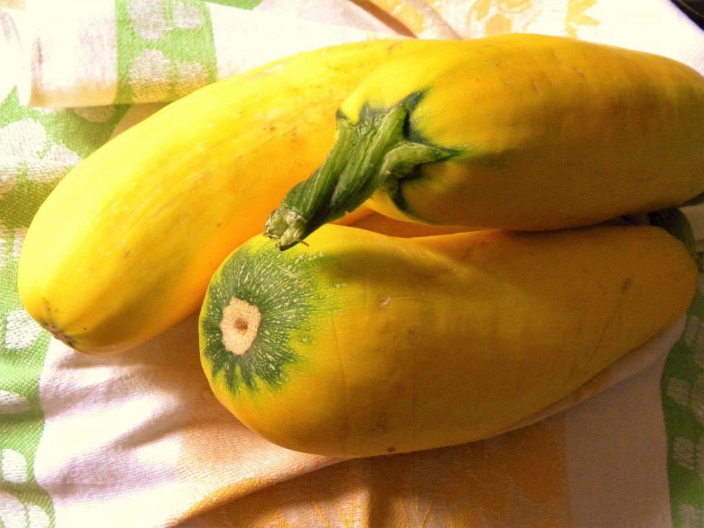 żółta cukinia