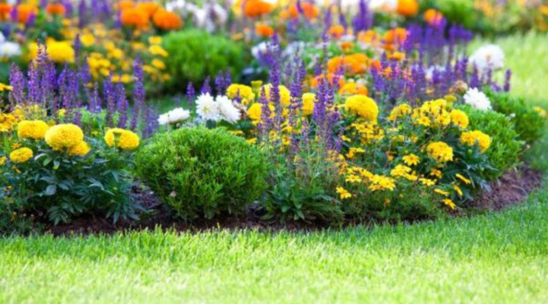 ogród źródłem relaksu