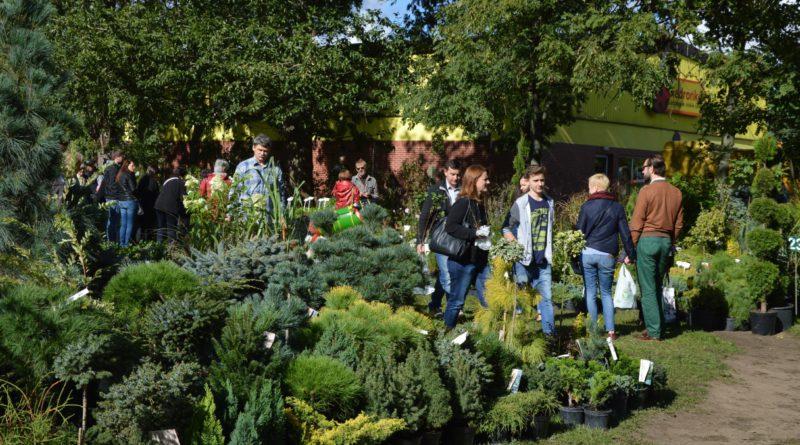 targi ogrodnicze jesień 2016